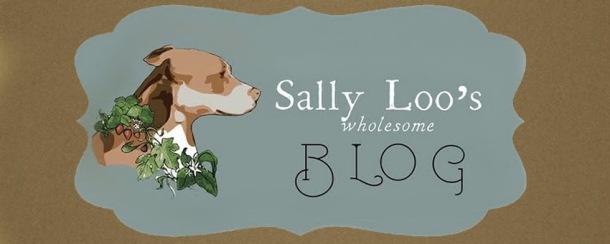 SallyLoosLogo