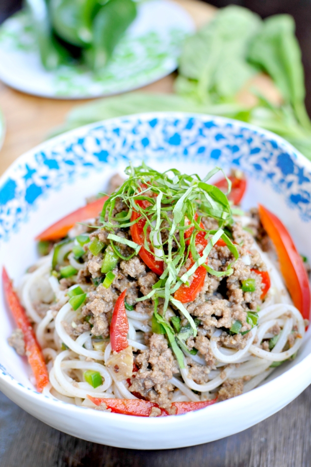 Rice Noodles w/ Coconut-Braised Bison & Peppers (gluten-free, paleo-ish) // the pig & quill